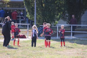 30.09.2018 - Rugby Nachwuchs - Turnier Henningsdorf